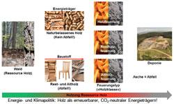 Fachgerechte Entsorgung von Holzasche, Schematische Gliederung